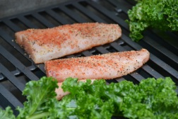https://sallycooks.com/2013/08/08/garlic-lemon-grilled-kale-and-mahi-mahi/