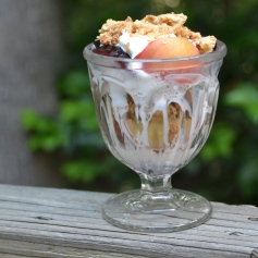 https://sallycooks.com/2014/06/20/plum-and-peach-crumble-sundae/