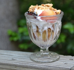 https://sallycooks.com/2014/06/20/plum-and-peach-crumble-sundae/